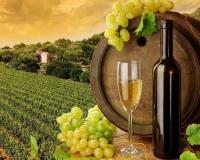 Даешь натуральное вино и шампанское по минимальным ценам…