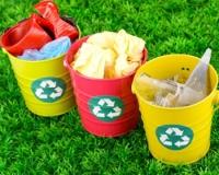 Экологи выступают против строительства мусоросжигательных заводов