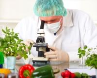 Новые правила торговли пищевыми продуктами