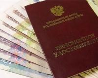 ОЭСР подверг жесткой критике российскую пенсионную реформу