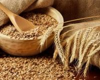 Власти обновили ставку «зерновой» экспортной пошлины