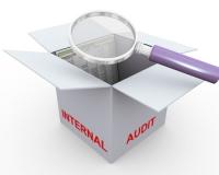 Внутренний аудит: «доверенные консультанты» против «предоставляющих уверенность»