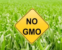 Запрет на ГМО